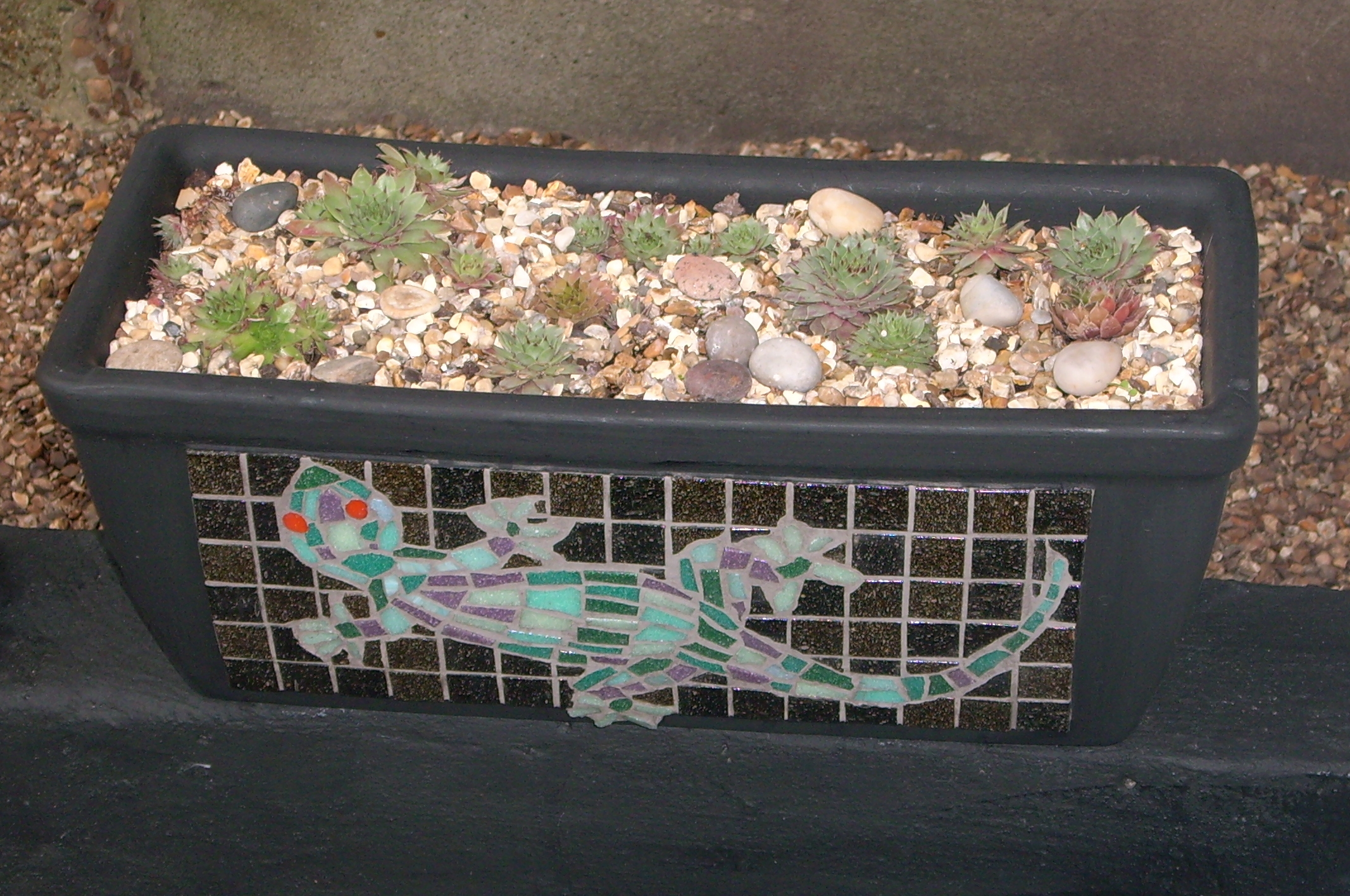Lizard Trough