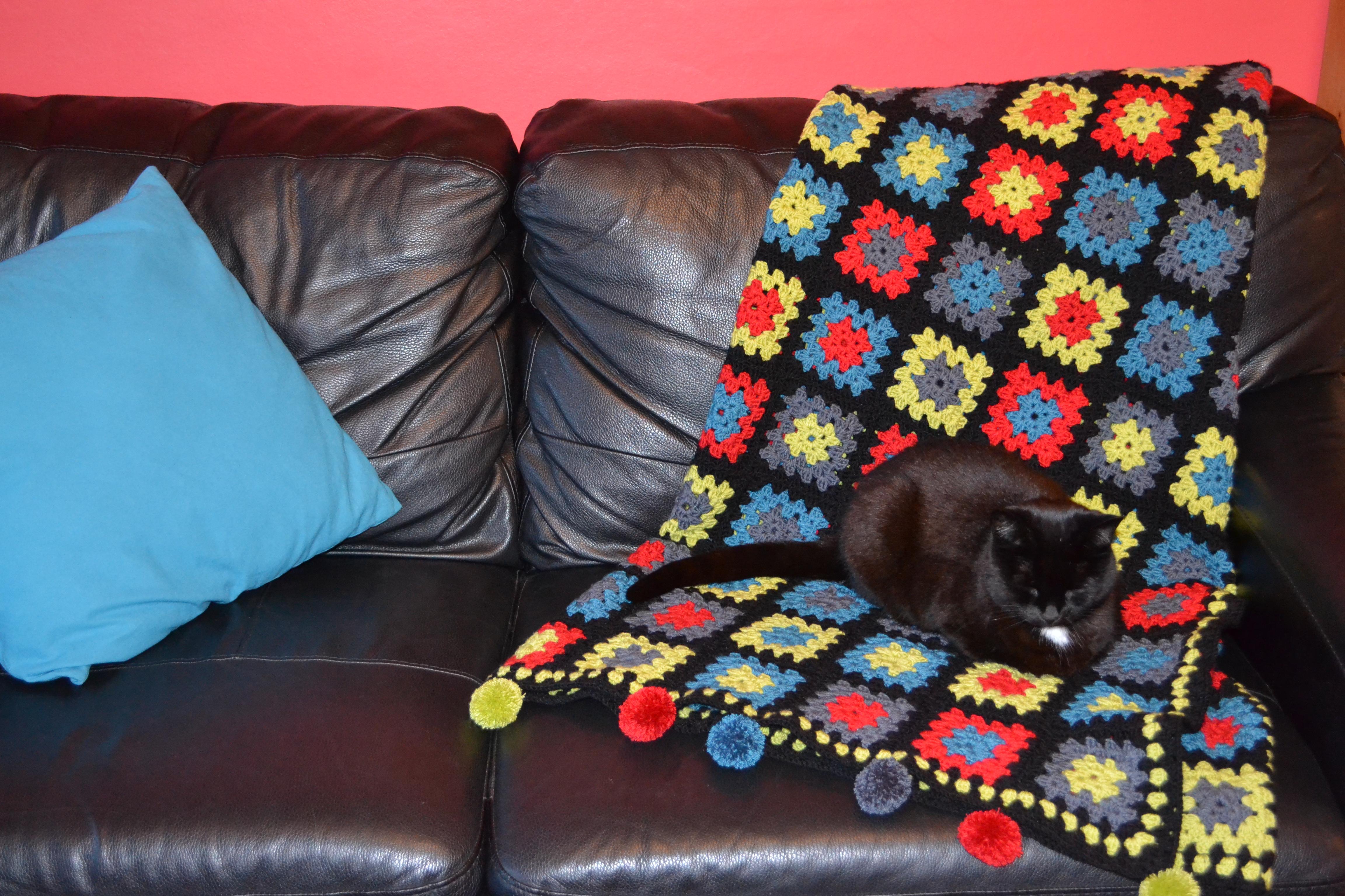 Crochet blanket (14)
