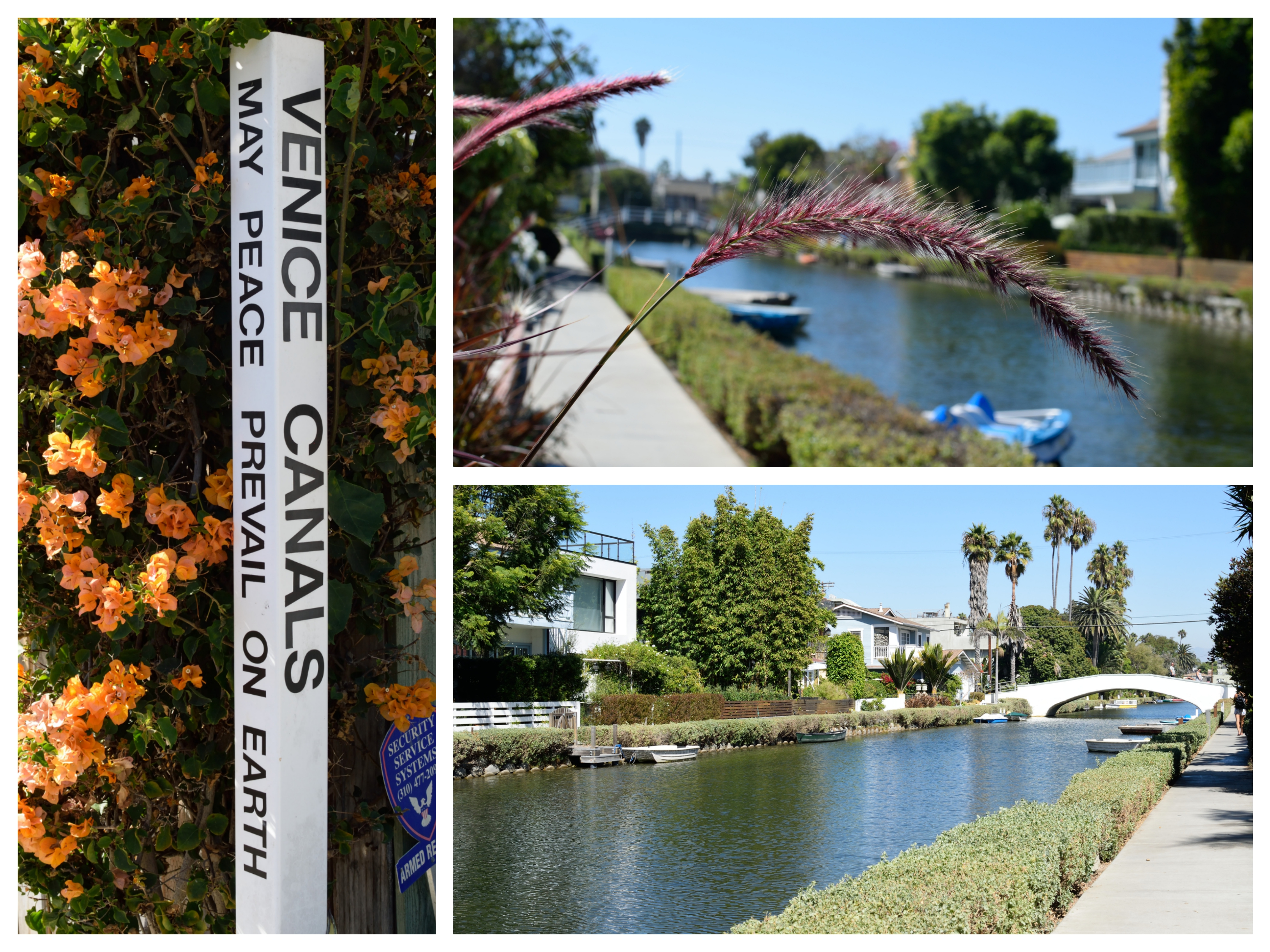 Day 3 am Venice Canals (3) resize_Fotor_Collage 5